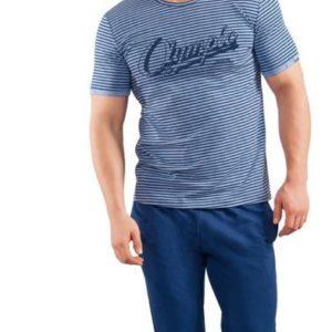 Комплект мужской Clever Wear CLE MHP580223/2